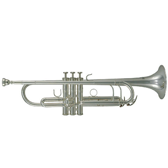 The Music Academies Flute-Clarinet-Sax Rentals